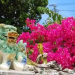 彼との愛を深める!沖縄旅行のおすすめデートスポット5選