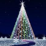 クリスマスを楽しもう!彼氏と絶対行きたいオススメのイルミネーション5選