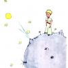 心の奥に響く名作!星の王子様に登場するロマンチックな言葉5選