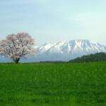4月は登山の季節!彼氏との旅行におすすめの登山スポット5選(関東編)